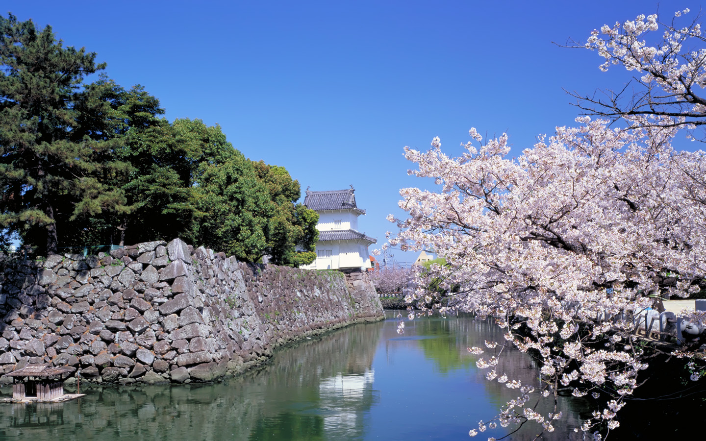 1440x900 beautiful wallpaper japan for Papel de pared paisajes