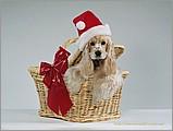 聖誕主題桌布122 - ml0122.jpg